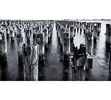 Princess Pier - Melbourne Photographic Print
