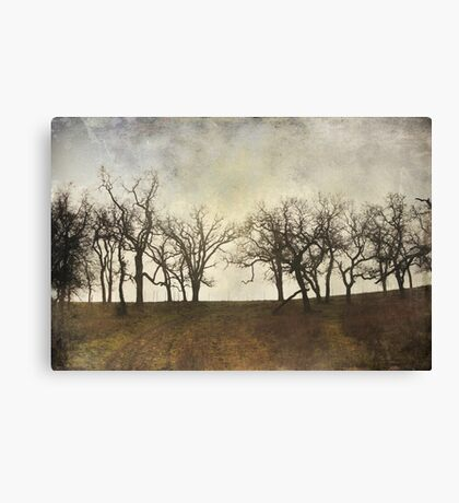 Someone Waits For Me Canvas Print