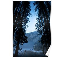 Lonely Walk Through Misty Trees Poster
