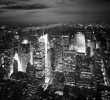 NYC: Citylights by Nina Papiorek