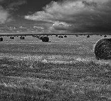 Rural Landscape by Vince Russell
