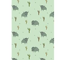 Bison Pattern Pistachio Photographic Print
