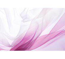 Pink Chiffon Photographic Print