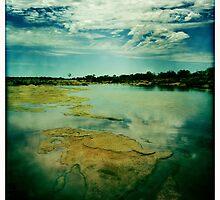 The River by Pene Stevens