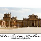 Blenheim Palace - Woodstock, Oxfordshire by newshamwest