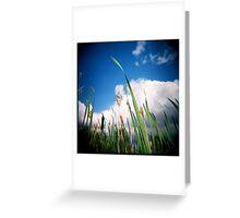 Ashy's 'Bullrush sky' Greeting Card