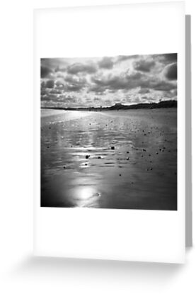 Ashy's 'Shiny Beach' by Art 4 ME