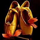 last dancing .... by anisja