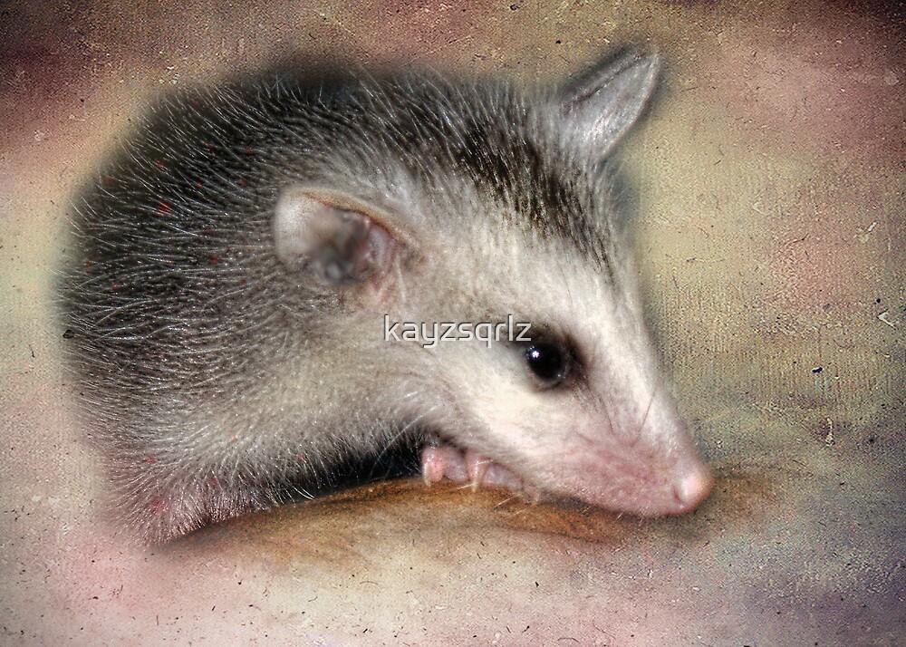 Possum Baby by Kay Kempton Raade