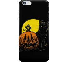 Still Life with Feline & Gourd iPhone Case/Skin