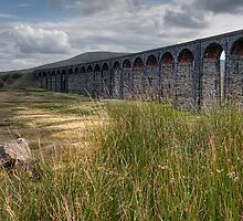 Ribblehead Viaduct by Neal Petts