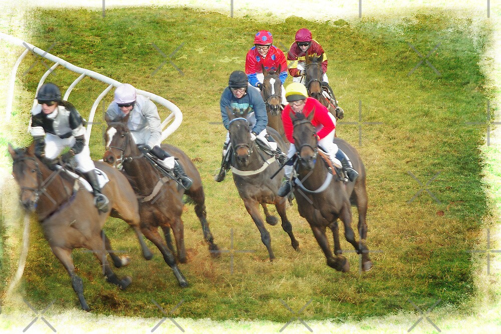 Race for the Winning Post by Catherine Hamilton-Veal  ©