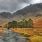 Warnscale Beck & Haystacks by Jamie  Green
