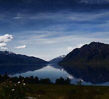 New Zealand : South Island by webgrrl