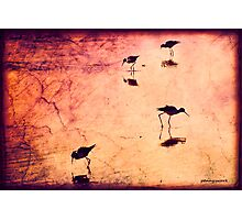 Stilts in red Photographic Print