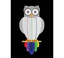 Rainbow Owl (black) Photographic Print