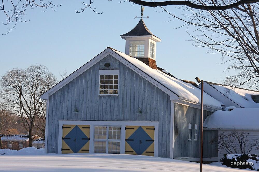 Diamond Barn Doors by daphsam