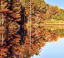 Reflections of Autumn by barnsis