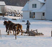Amish Snow Plow II by Michael  Dreese
