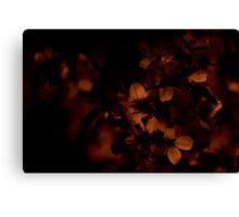 {Night Blossoms} Canvas Print