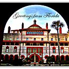 Greetings from Florida by John Tomasko