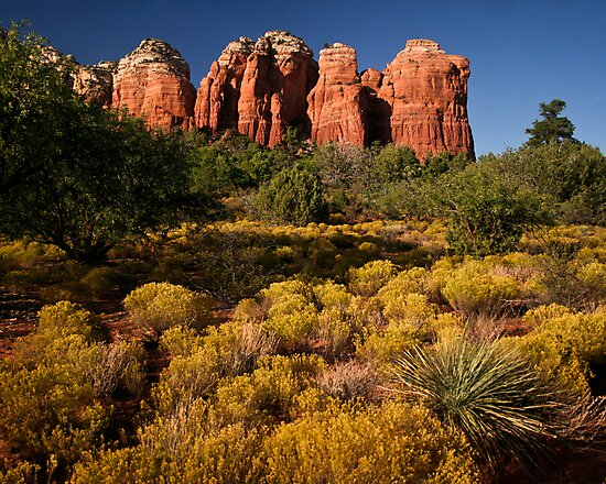Sedona Coffee Pot by Stephen Cross Photography