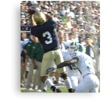 Leaping Catch Metal Print