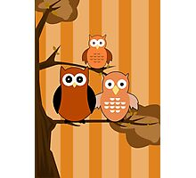 Orange Owls Photographic Print