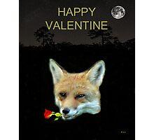 Eftalou Fox Max with rose HAPPY VALENTINE Photographic Print