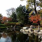 View of Pond in Japanese Garden, Jackson Park, Chicago by Erica Lipper