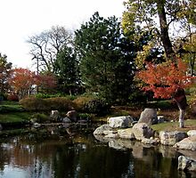 View of Pond in Japanese Garden, Jackson Park, Chicago by ericalipper