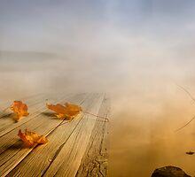 Autumn fog by Veikko  Suikkanen
