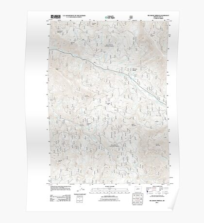 USGS Topo Map Oregon McCredie Springs 20110722 TM Poster