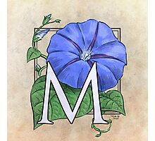 M is for Morning Glory Photographic Print