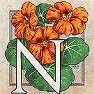 N is for Nasturtium card by Stephanie Smith