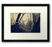 In The Forest of Dreams Framed Print