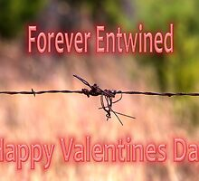 Forever Entwined Valentine by Sandra Moore