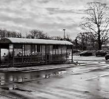 Slices of winter # 4 by clickinhistory