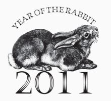 Year of the Rabbit by Zehda