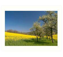 Spring Field Art Print