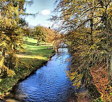 River Ure - Broughton Estate by Sandra Cockayne