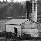 Barn and Silo 1 by arawak