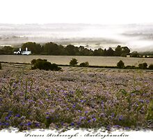 Vale of Aylesbury - Chiltern Hills, England by newshamwest