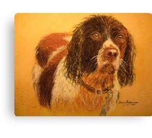 Wet Spaniel Canvas Print