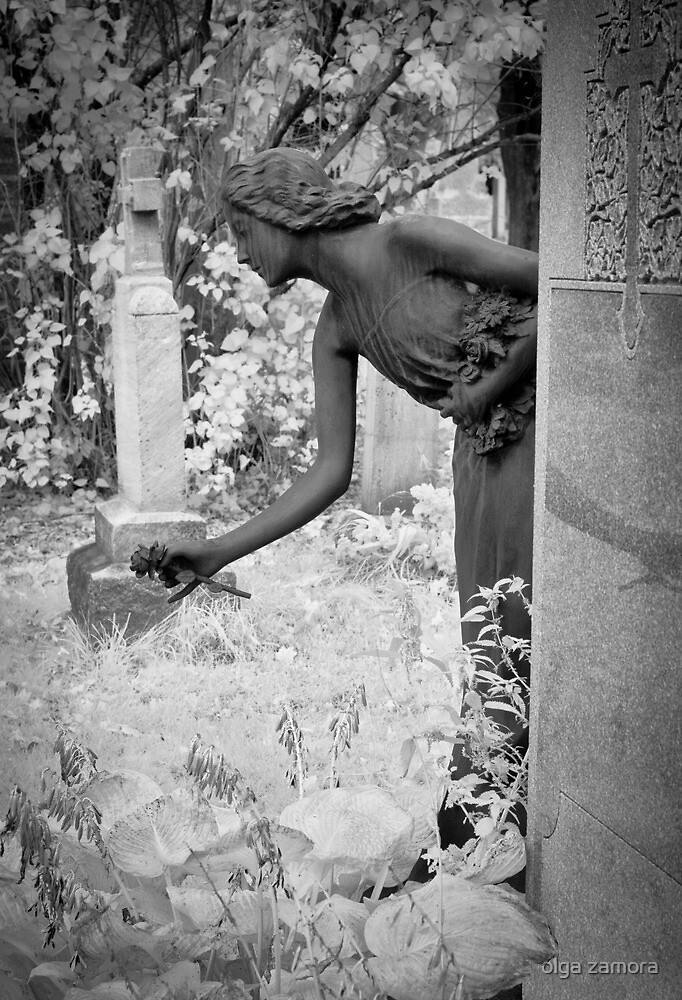 Last Flower by olga zamora