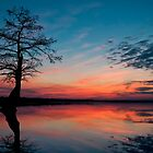 Just another Lake Drummond Sunset by Bruce Bischoff