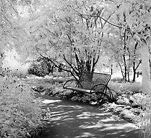 Dream Bench 1 by olga zamora