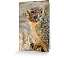 marmot-alert Greeting Card