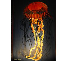 Jellyfish Oil Painting Photographic Print