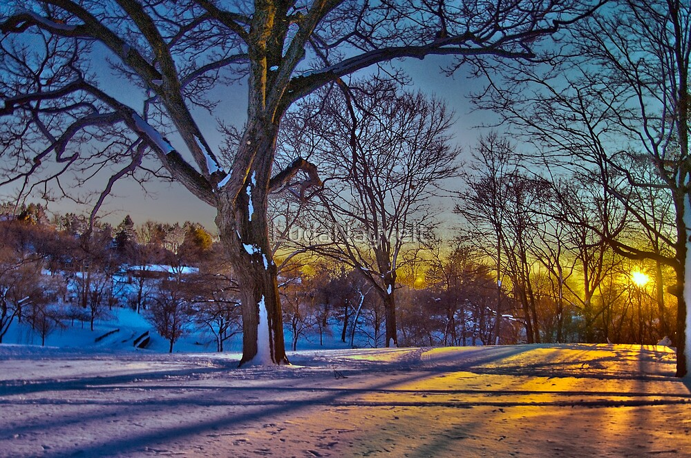 Winter Light  by LudaNayvelt